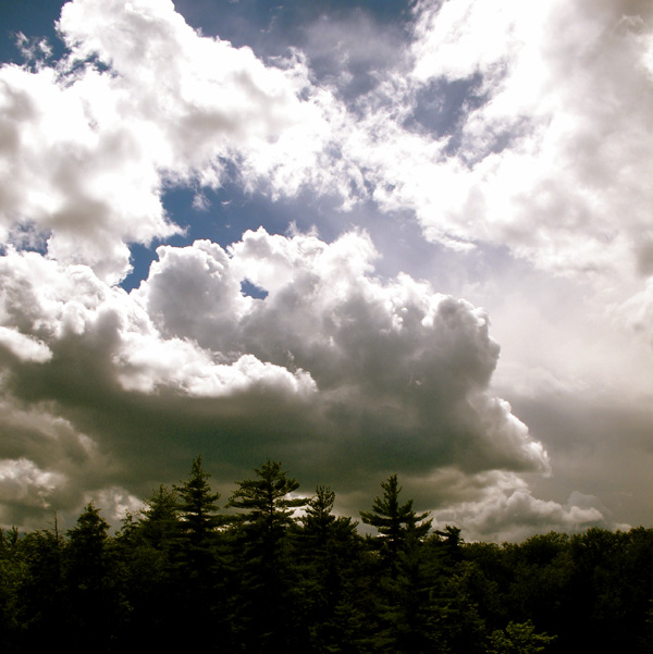 clouds_trees1